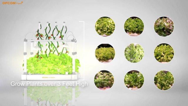 DIY Hydroponics – Indoor Farming and gardening with GrowBox