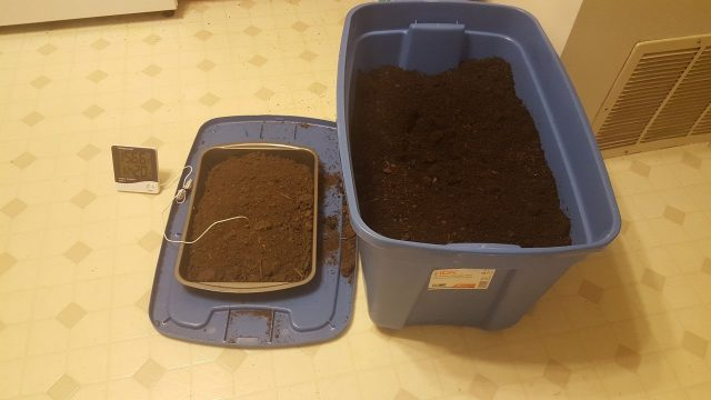 Indoor Gardening: Sterilizing Soil