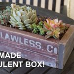 DIY: AWESOME Wooden Succulent Planter Box!