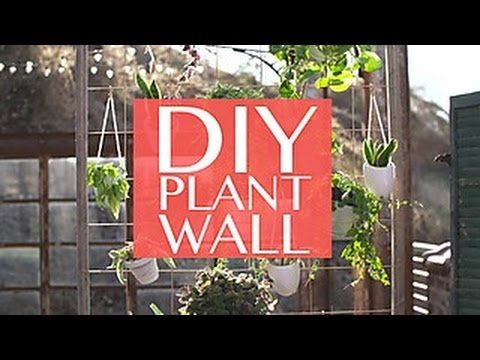 DIY Plant Wall for Small-Space Gardeners – HGTV