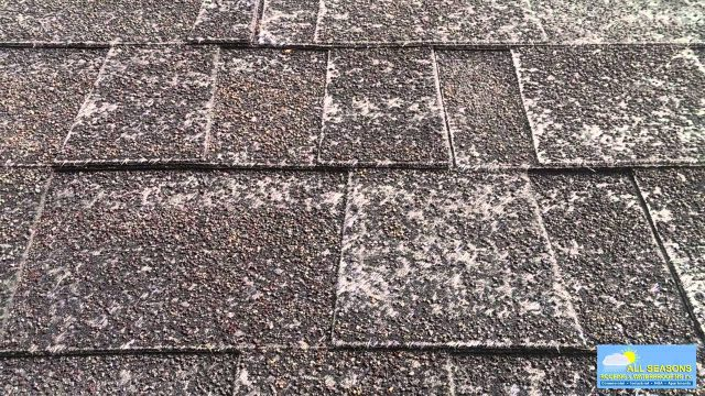 Fall Roof Tips Video OSR logo