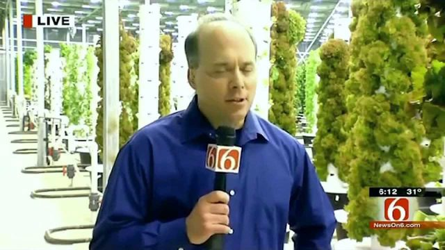 "Aeroponic farm, exploding with food in the middle of a winter ""food desert""!"