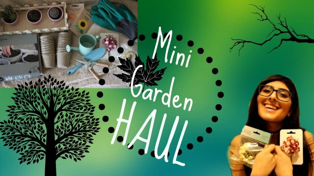 Mini Garden HAUL – Beginner's Indoor Gardening Supplies