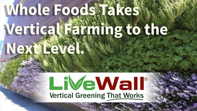 The Living Wall at Lakeview Whole Foods Market Chicago