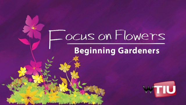 Beginning Gardeners: Focus on Flowers
