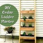 DIY LADDER PLANTER   VERTICAL HERB GARDEN PLANTER   PLANTER BOXES