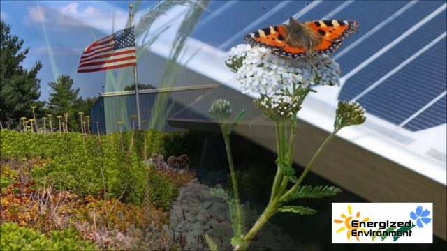 Energized Environment – Solar Garden Roof – Green Roof Technology
