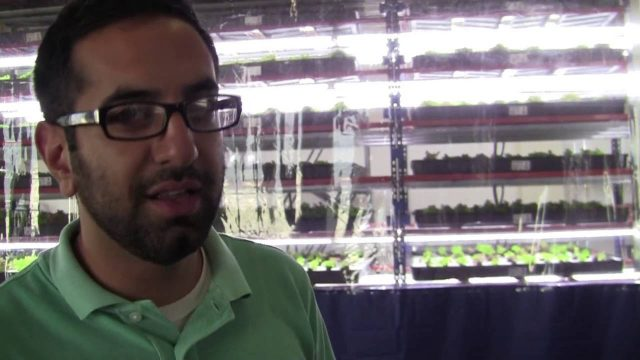 Starting An Indoor Farming Company: What Kind Of Buildings To Use (5/12)
