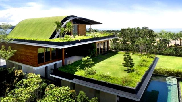 12 Homes with Living Roofs