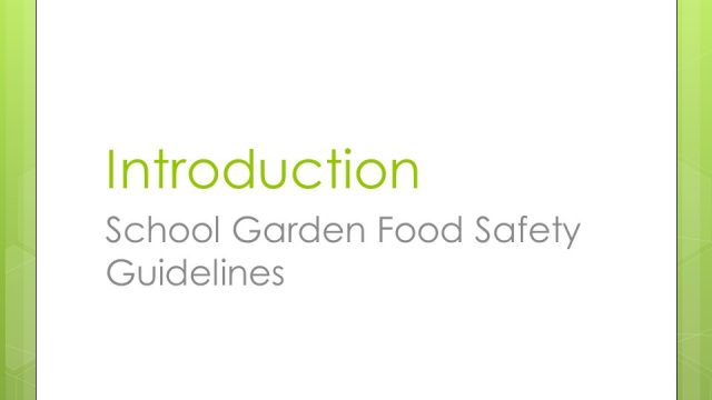 Intro to School Garden Food Safety Guidelines
