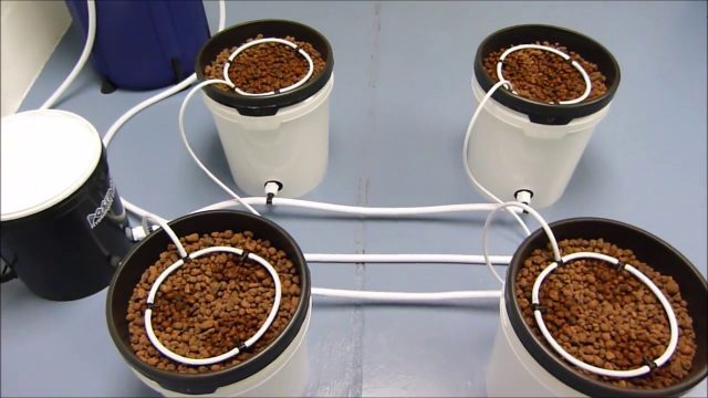 Monsoon Drippers – Poseidon Hydroponic Systems