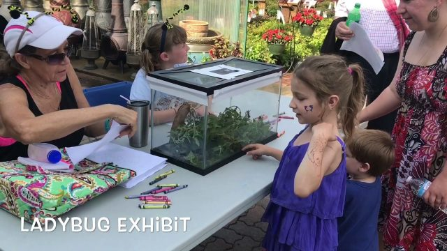 Highlights From Our 2nd Kids Gardening Festival!