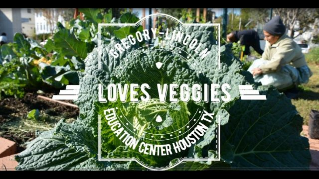 Gregory-Lincoln LOVES OUR VEGGIES!!!