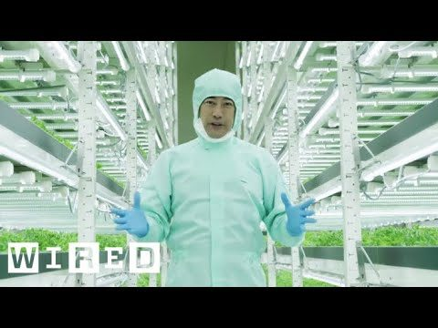 Tokyo's Vertical Farms – The Future of Farming | WIRED
