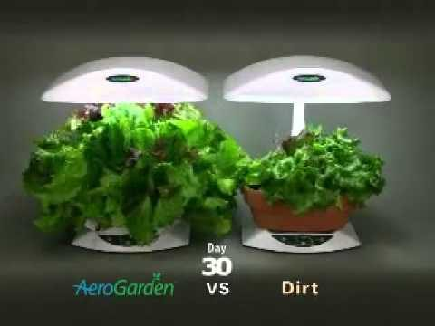 Indoor Gardening with AeroGarden