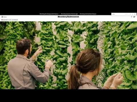 2 Million Lbs. Of Greens On 1+ Acre – Plenty Indoor Farm