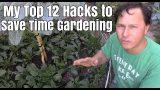 My Top 12 Hacks to Save Time Vegetable Gardening