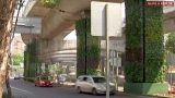Mexicans seek to combat pollution with vertical gardens