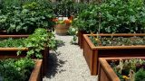 backyard vegetable garden design ideas 2017