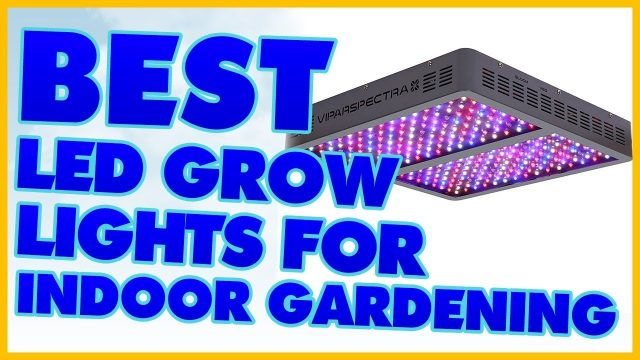10 Best LED Grow Lights For Indoor Gardening Review 2017