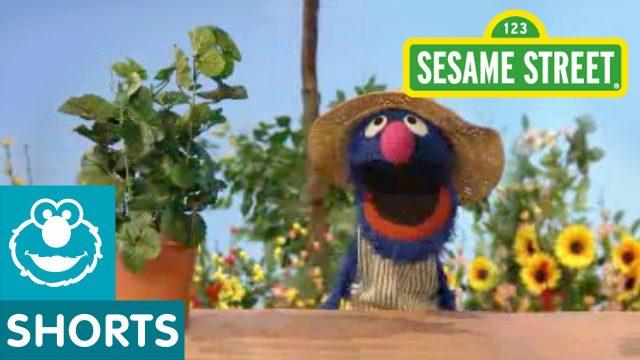 Sesame Street: Grover Talks About Plants
