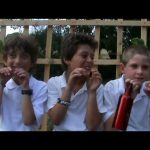 Grow PDC School Garden Project