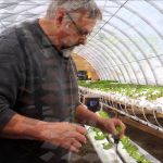 SPRING HILL FARMS TROUT CREEK HYDROPONIC LETTUCE HOUSE UPDATE