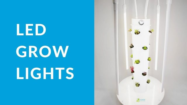 How to Use Your Tower Garden® LED Lights Kit