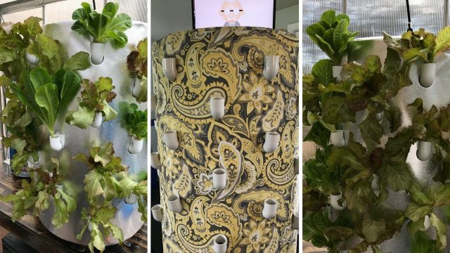 """Art Garden Growing System's, The Future Is NOW! Smart-Tech Vertical Aeroponics meets Artistry"""