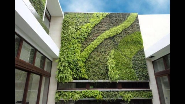 Design ideas vertical green wall system