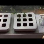 Prosumer's Choice Indoor Garden Hydroponic Kit