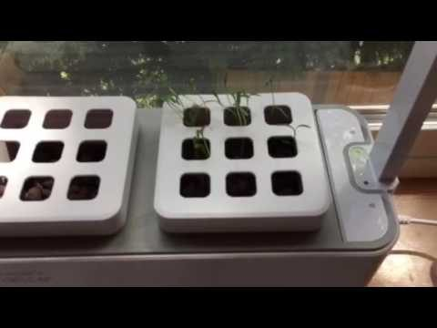 Prosumer's Choice Indoor Garden Hydroponic Kit