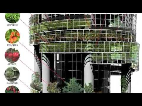 Rise of Vertical Farms Presentation