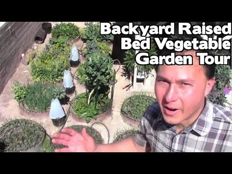 Backyard Raised Bed Vegetable Garden Tour