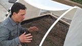 Winter Vegetable Gardening in the Desert & How to Make a Cockroach Trap