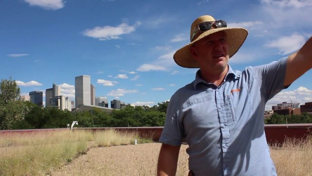 Interview with Green Roof Expert: Andy Creath