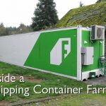 Inside a Shipping Container Vertical Hydroponic Farm