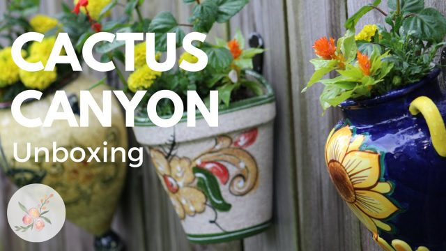 Unboxing: Cactus Canyon Ceramics – Wall Hanging Planters
