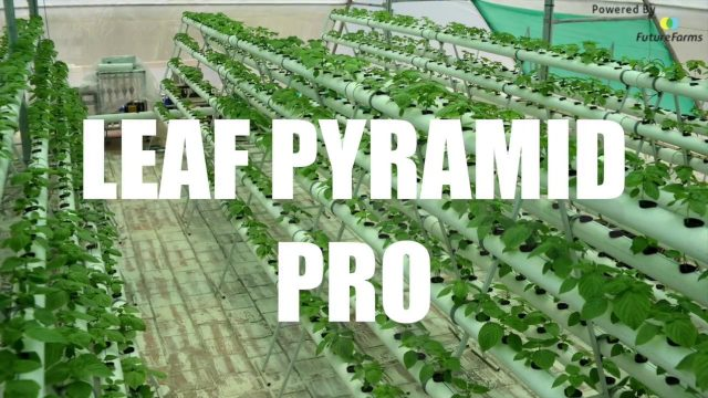 Unboxing – Leaf Pyramid Pro (Hydroponic Home Kit) – Future Farms (India)