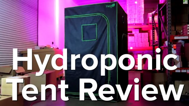 Hydroponic Indoor Grow Tent GrowAce Review | Horticulture Indoor Gardening