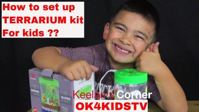 How to set up Terrarium kit for kids ??  Keelan's Corner  ok4kidstv video 34