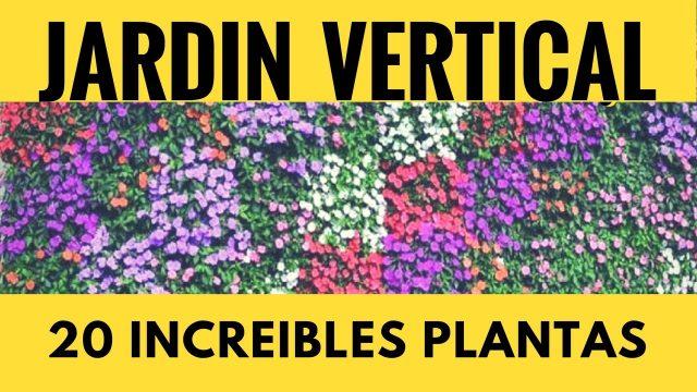 PLANTAS DE JARDÍN VERTICAL PLANTAS DE SOL Y SOMBRA PARA JARDÍN EXTERIOR INTERIOR DISTINTAS ESPECIES