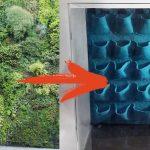 CURSO: Montaje de un jardín vertical sumergido en acuario (PARTE 1)