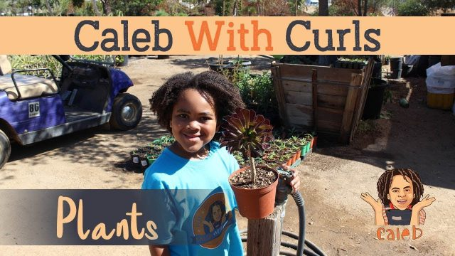 Gardening Videos for Kids – Caleb With Curls – Rancho Valhalla Nursery