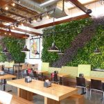 Brome Burgers & Shakes Green Walls – Project of the Week 7/10/17