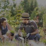 Landscape Design Las Vegas – Health Benefits of Gardening and Landscaping
