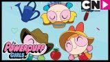 Powerpuff Girls | The Vegetable Garden | Cartoon Network