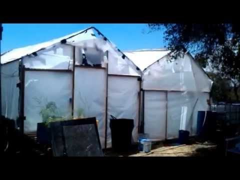 Growing with Hydroponics – problems to be aware of
