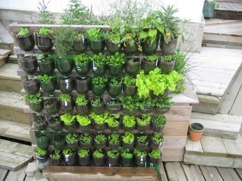 Vertical Garden Ideas Bangalore – A 0$ Vertical Garden with plastic soda bottles