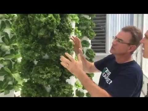 TRUE GARDEN – TOWER GARDEN – Aeroponics